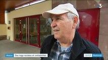 Alsace : des tags racistes et antisémites dans une commune du Bas-Rhin