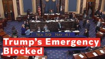 12 Republicans Side With Democrats In Voting To Block Trump's National Emergency Declaration