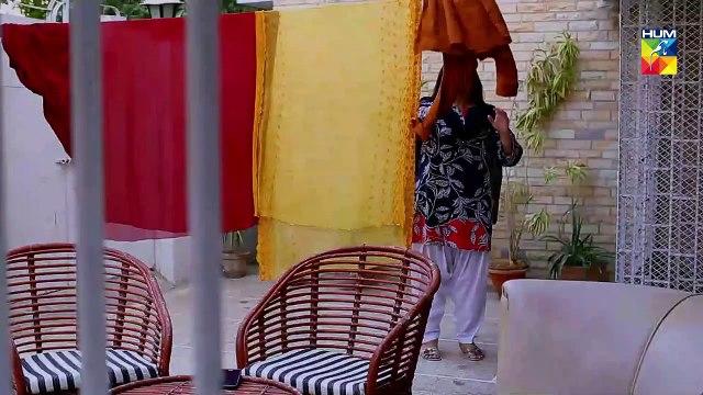 Tu Ishq Hai Epi 32 HUM TV Drama 14 March 2019