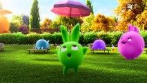 Dessin animé pour petit   Sunny Bunnies   PING PONG   Cartoons drôles pour les enfants