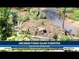 Seekor Gajah Liar Ditemukan Mati di Bengkulu