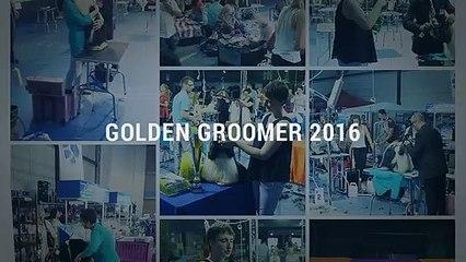 Golden Groomer 2016