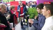 VIDEO. Les 25e Vinycées d'Amboise