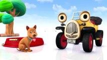 ★ Brum en Français ★ Brum et le coquin de chien - Dessin animé Cmplet en francais HD