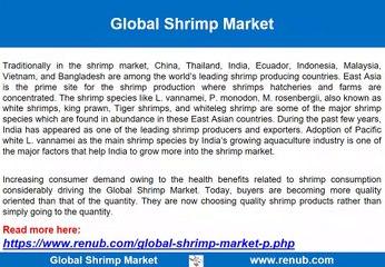 Global Shrimp Market Growth