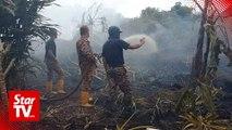 Community help needed to stop Sarawak wildfires