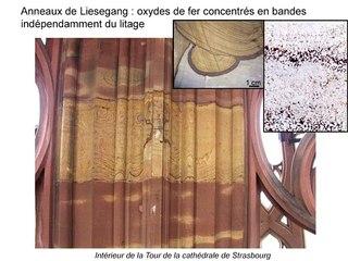 08. Développement des patines argilo-ferrugineuses et conservation des épidermes des grès