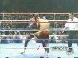 Ernesto Hoost - King of Muay Thai