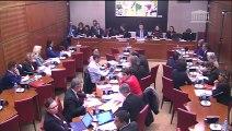 Commission des affaires culturelles : Mme Roxana Maracineanu, ministre des Sports  - Mercredi 20 mars 2019