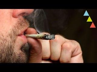 Los 10 mejores países para fumar Marihuana