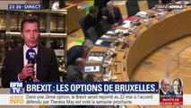 Brexit: l'Union européennes accorde à Londres trois options pour un report après le 29 mars