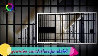 জুলুম সয়েছে মুমিনেরা বারবার   Ei Karagar To Sei Karagar Julum   Islami Janala BD   Islamic Song 2019
