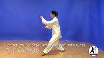 Tai Chi Yang 24 mouvements