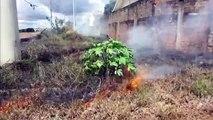 Fogo atinge área de mato às margens da PRc-467