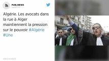 Algérie. Les avocats dans la rue à Alger maintiennent la pression sur le pouvoir