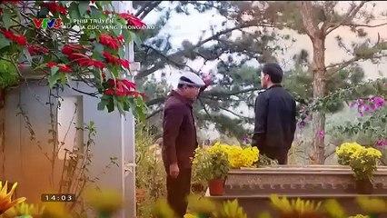 Hoa cúc vàng trong bão tập 21 full - Bản chuẩn - VTV3 Rubic8 - 30/3/2019 - Phim Việt Nam VTV3 - Hoa cuc vang trong bao tap 21