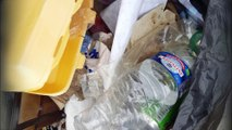 Près de 70.000 déchets récoltés en plein Paris par des bénévoles