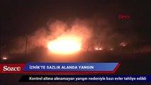 İznik'te sazlık alanda yangın çıktı