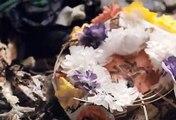 청주오피【op700com】【달콤월드ST┖청주오피┙】청주op 청주건마㉩ 청주kiss 청주유흥 청주오피㊯ 청주휴게텔 청주마사지 청주오피 청주안마