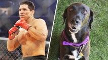 UFC Champion Frank Shamrock Leaves Dog Alone in Dallas Airport Parking Garage