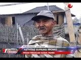 Belasan Desa Terpapar Abu Bromo, Petani Terancam Gagal Panen