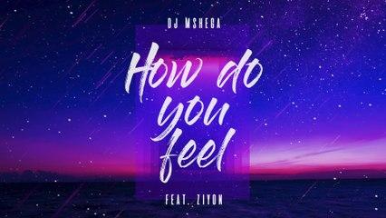 DJ Mshega - How Do You Feel