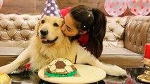 Kasauti Zindagi Kay's Erica Fernandes enjoys her special someone's birthday | Boldsky