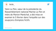 Soupçons d'emplois fictifs au Parlement européen. Yann Le Pen mise en examen.