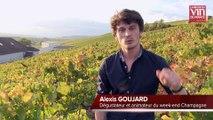 Week-ends prestige La RVF: les lecteurs à la rencontre des vignerons