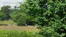 CORREZE. Egletons. Terrain constructible de 20 500 m2 près de la gare d'Egletons.