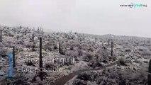 Avez-vous déjà vu de la neige dans un désert