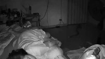 TERRIFIANT  une grand-mère mordue par un python dans son sommeil