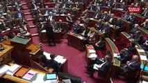 Loi Pacte : le Sénat, opposé aux privatisation d'ADP et de la FDJ, pourrait rejeter le texte avant examen