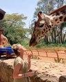 Ce qu'elle fait avec la girafe va vous choquer !