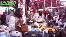 Lalon Mela 2019 - Lalon Festival 2019 / লালন মেলা - দোল পূর্ণিমা ২০১৯, লালন উৎসব HD