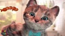 kitten show Play Fun Little Kitten My Favorite Cat Show -Talking Tom -Top Games 2019 For Children & Toddlers
