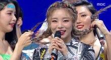 [HOT] 3월 5주차 1위 '마마무 - 고고베베(MAMAMOO  - gogobebe)' Show Music core 20190330