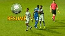 Chamois Niortais - FC Sochaux-Montbéliard (0-1)  - Résumé - (CNFC-FCSM) / 2018-19