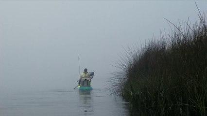 Travel Track On Sirk TV: SPRING CREEK (BIG BEND WILDLIFE MANAGEMENT AREA) [Perry, Florida]