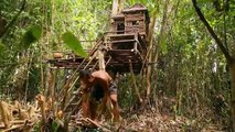Primitive Technology - Build Bath Swimming On The Tree House By Ancient Skills