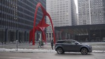 The Flamingo | A Refined Point of View: Chicago