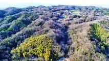 くろんど池/ドローン空撮 奈良県生駒市 絶景綺麗な風景美しい景色 ファントム4 Black pond / drone aerial view Japan Nara beautiful scenery