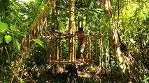 Bushman Build An Alien House Inside The Amazon Jungle