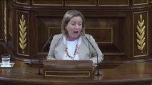 Enfrentamientos encendidos de Coalición Canaria y Nueva Canarias con Iglesias