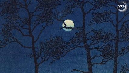 La Lune : l'exposition
