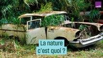 La nature, c'est quoi ?