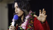 How Does Tulsi Gabbard Stack Up To The Competition?