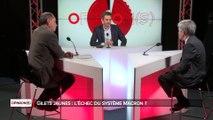 Opinions - Alain Minc