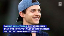 Tom Holland Wasn't Given a Script for 'Avengers: Endgame'