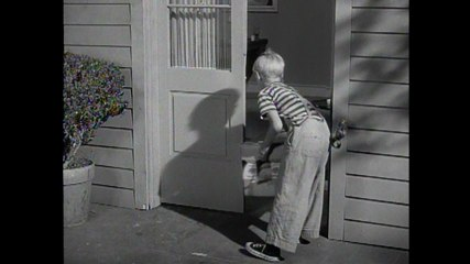 Dennis The Menace: S1 E18 - Dennis And The Duck